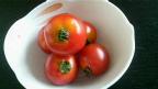 平野さんのトマト